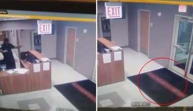 vigilante de seguridad fantasma 384x220 - Cámara de seguridad muestra el momento en que un vigilante de seguridad se encuentra cara a cara con un fantasma