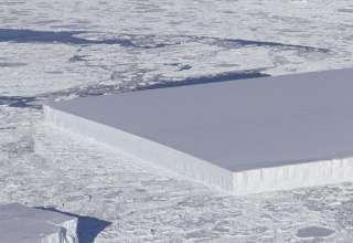 nasa iceberg perfectamente rectangular 320x220 - La NASA publica la imagen de un misterioso iceberg perfectamente rectangular