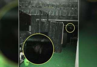 rostro demoniaco monje 320x220 - Fotografían el rostro demoníacode un monje en el mismo lugar donde murió quemado hace 500 años