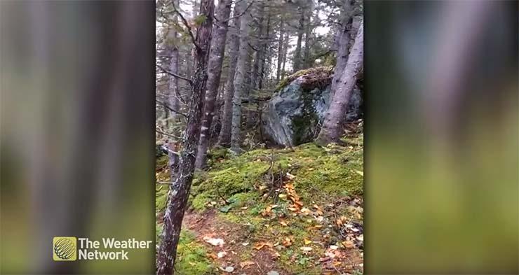 video muestra tierra respira - De nuevo un impactante vídeo muestra cómo la Tierra respira