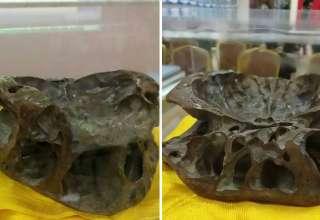 craneo extraterrestre 320x220 - Investigador exhibe el cráneo de un ser extraterrestre en China