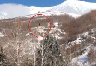 bigfoot montana utah 320x220 - Graban un verdadero Bigfoot en una montaña de Utah