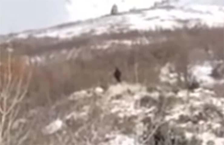 bigfoot utah - Graban un verdadero Bigfoot en una montaña de Utah