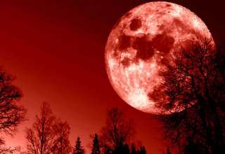 "rituales hechizos superluna sangre lobo 320x220 - Rituales y hechizos para la ""Superluna de sangre de lobo"""
