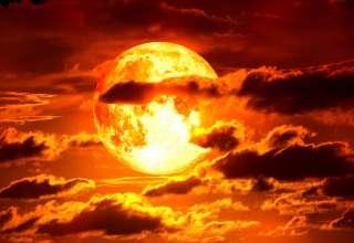 """superluna sangre lobo profecia biblica 320x220 - Vinculan la """"Superluna de sangre de lobo"""" con la profecía bíblica de los '10 días'"""
