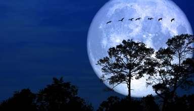 luna de nieve 384x220 - Luna de nieve: significado espiritual y efectos catastróficos en la Tierra