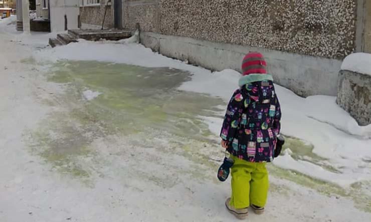 nieve verde - Señales apocalípticas en todo el mundo: lluvia de peces, nieve verde, plaga de langostas y una ballena en el Amazonas