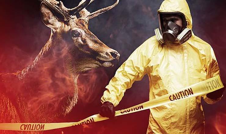 virus zombi animal humanos - Científicos advierten que un virus zombi de origen animal se está propagando a los humanos