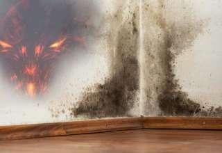 moho entidades demoniacas 320x220 - Moho en las paredes, entradas para entidadesdemoníacas