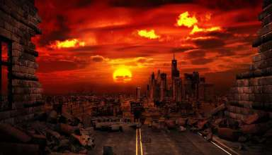 cerebro cerdo muerto 384x220 - Científicos cumplen una señal del Apocalipsis: Reviven el cerebro de un cerdo muerto