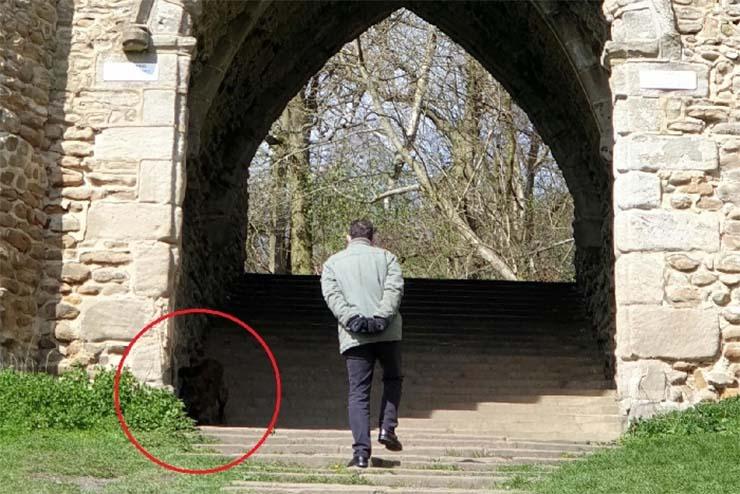 perro demoniaco parque inglaterra - Fotografían un perro demoníaco en un parque de Inglaterra