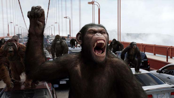 """planeta simios genes humanos - Comienza """"El planeta de los simios"""": Científicos chinos inyectan genes cerebrales humanos en monos"""