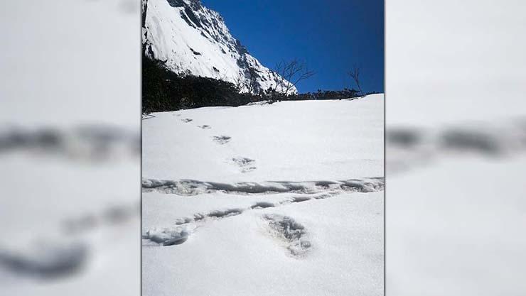 huellas yeti - El Ejército de la India asegura haber encontrado huellas del Yeti