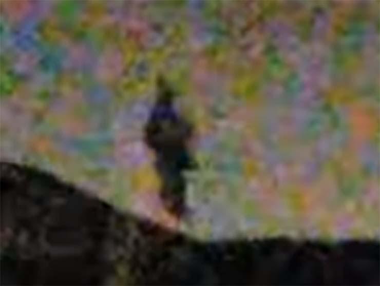 humanoide volador california - Varias personas ven un humanoide volador sobre California