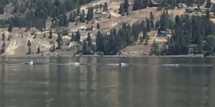 ogopogo canada - Graban al legendario monstruo Ogopogoen un lago de Canadá