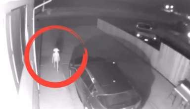 siniestra criatura colorado 384x220 - Cámara de seguridad capta una siniestra criatura en el aparcamiento de una casa en Colorado