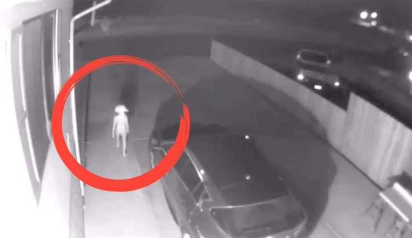 siniestra criatura colorado 850x491 - Cámara de seguridad capta una siniestra criatura en el aparcamiento de una casa en Colorado