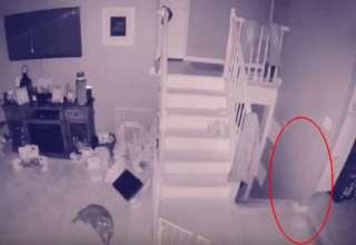 fantasma nino mascota 320x220 - Un hombre graba el fantasma de un niño y su mascota vagando por su casa