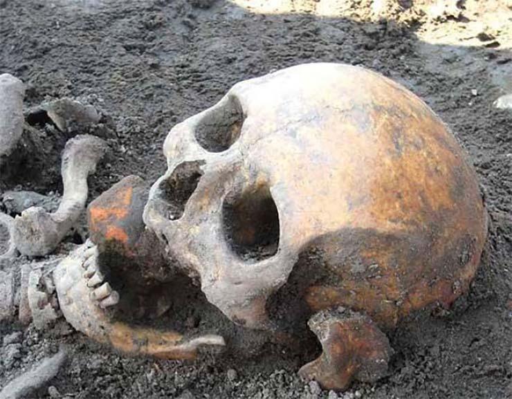 vampiro real del siglo xviii - Científicos recrearán en 3D el rostro de un vampiro real del siglo XVIII