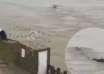 monstruo gigante china 104x74 - Un sorprendente video muestra un monstruo gigante en un río de China