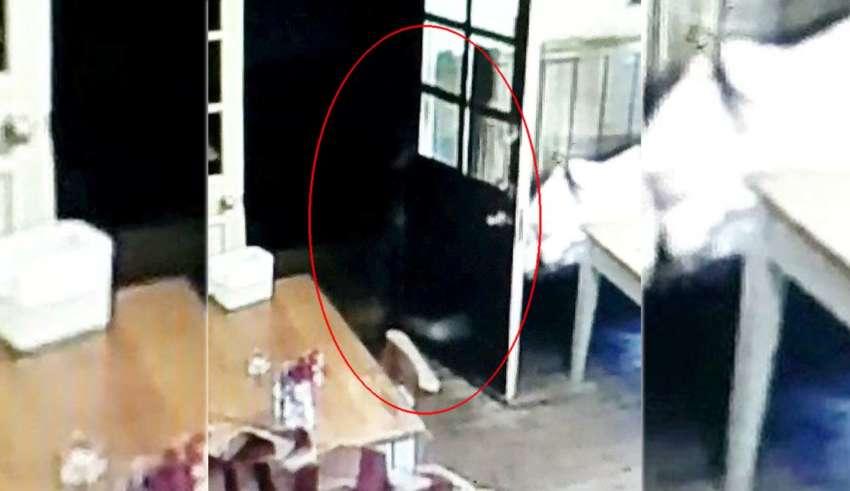 fantasma de una nina 850x491 - Cámara de seguridad muestra el fantasma de una niña persiguiendo a la camarera de un pub inglés