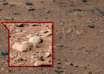 vida extraterrestre en marte 104x74 - Ex científico de la NASA asegura que encontraron vida extraterrestre en Marte hace 40 años