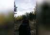 aterradores aullidos bosque 104x74 - Biólogos no pueden explicar los aterradores aullidos en un bosque canadiense