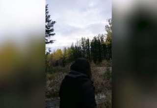 aterradores aullidos bosque 320x220 - Biólogos no pueden explicar los aterradores aullidos en un bosque canadiense