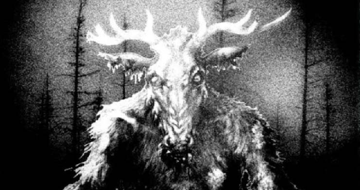 aterradores aullidos bosque canadiense - Biólogos no pueden explicar los aterradores aullidos en un bosque canadiense