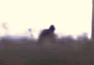 mitica criatura rusia 320x220 - Científicos investigan un video que muestra a una mítica criatura persiguiendo un coche en Rusia