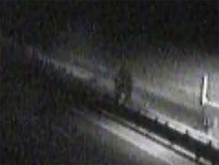 policia oregon bigfoot - La Policía Estatal de Oregón publica la imagen de un Bigfoot en una carretera