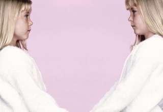 telepatia gemela conexion psiquica 320x220 - Telepatía gemela: la conexión psíquica