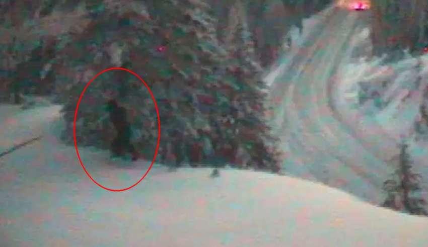 departamento de transporte bigfoot 850x491 - El Departamento de Transporte de EE.UU. publica imágenes de un Bigfoot real