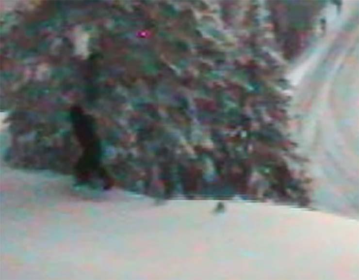 departamento transporte bigfoot - El Departamento de Transporte de EE.UU. publica imágenes de un Bigfoot real
