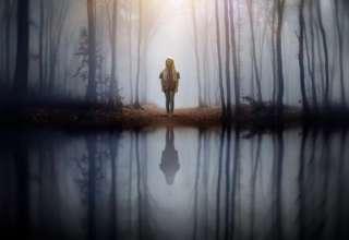 psiquicos persona desaparecida 320x220 - La policía de Kentucky reconoce que psíquicos han encontrado una persona desaparecida