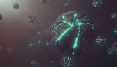coronavirus wuhan extraterrestre 384x220 - Reconocido astrofísico británico asegura que el coronavirus de Wuhan es de origen extraterrestre