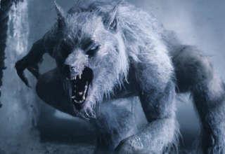 criatura bipeda 320x220 - Una enorme criatura bípeda está desmembrando los ciervos de un condado inglés