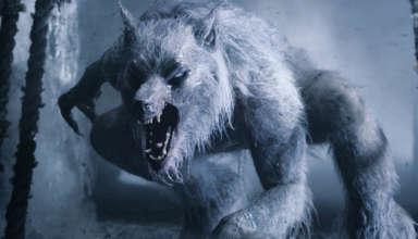 criatura bipeda 384x220 - Una enorme criatura bípeda está desmembrando los ciervos de un condado inglés