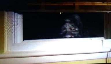 bigfoot ventana casa 384x220 - Un matrimonio fotografía un Bigfoot mirando por la ventana de su casa en Colorado