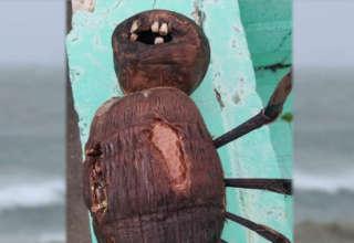 muneca de vudu dientes 320x220 - Un hombre encuentra una inquietante muñeca de vudú con dientes humanos en una playa de Florida