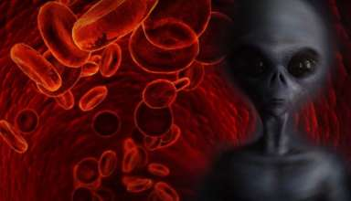 sangre rh negativa extraterrestres 384x220 - Sangre Rh negativa, descendientes de extraterrestres