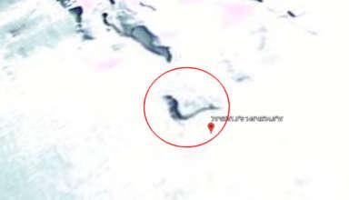 sirena congelada en antartida 384x220 - Descubren una sirena congelada en la Antártida a través de Google Earth