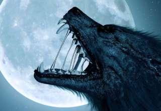 hombre lobo confinamiento 320x220 - Un hombre lobo aterroriza una ciudad mexicana durante el confinamiento