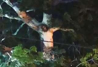 jesus arbol 320x220 - La imagen de Jesús aparece en un árbol durante la cuarentena de una ciudad en Colombia