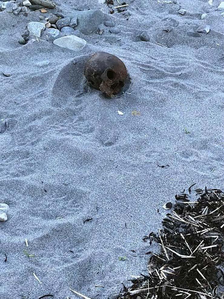 misteriosa calavera metal playa - Encuentran una misteriosa calavera de metal en una playa de Estados Unidos