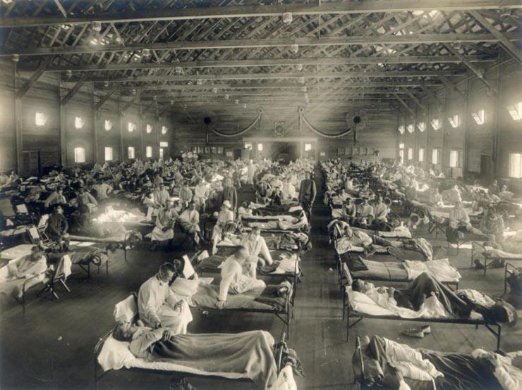 peste bubonica fiebre tifoidea - Pandemias que han ocurrido en el año 20 de cada siglo, ¿maldición, conspiración o casualidad?
