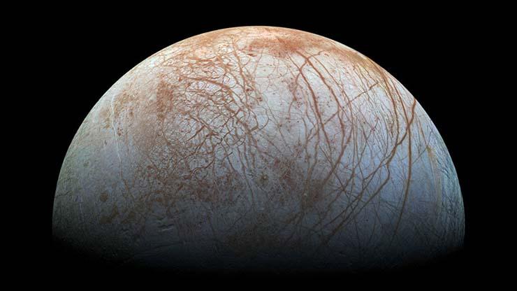 pulpos extraterrestres habitan luna jupiter - Una científica asegura que pulpos extraterrestres habitan la luna de Júpiter