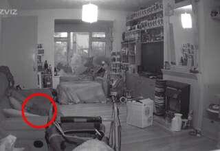 aparicion fantasmal gato 320x220 - Una mujer graba la aparición fantasmal de su gato un año después de su muerte