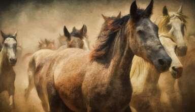 animales sexto sentido predecir terremotos 384x220 - Científicos confirman que los animales tienen un sexto sentido y pueden predecir terremotos