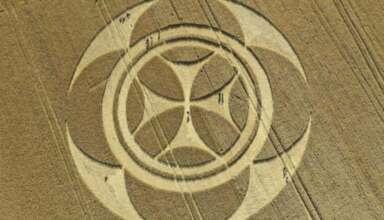 circulo cultivos senal templaria 384x220 - Aparece un gigantesco círculo de los cultivos con una señal templaria en un campo de Francia